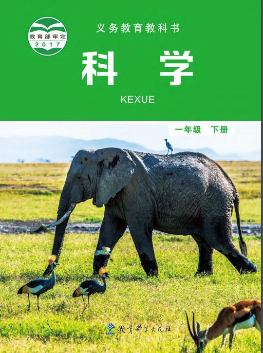 小学科学教科版(2017)一年级下册